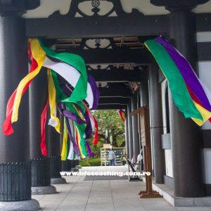 Dezvoltare personala, poza Bibo Eugen, Japonia
